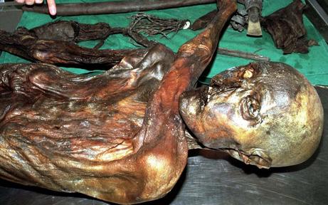 Diese Mahlzeit nahm Ötzi vor seinem Tod zu sich