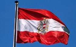 Dieb hisst rot-weiß-rote statt deutscher Flagge