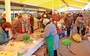 Wird Benediktinermarkt zu hundefreier Zone