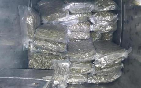 Polizeihund erschnüffelt 107 Kilogramm Cannabis