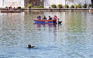 Wasserpolizisten retteten Wienerin aus Donaukanal