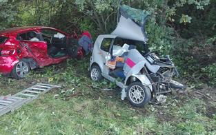 Alkolenker versteckte Lkw nach Crash im Wald