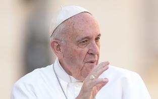 Österreichische Tanne für Papst