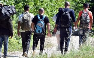 Höhere Sozialleistungen locken Migranten an