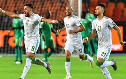 Algerien holt sich mit Glückstor den Afrika-Cup