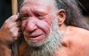 Auch Neandertaler nahmen Schmerzmittel & Antibiotika