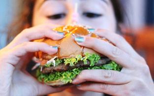 Junk Food schadet dem Hirn