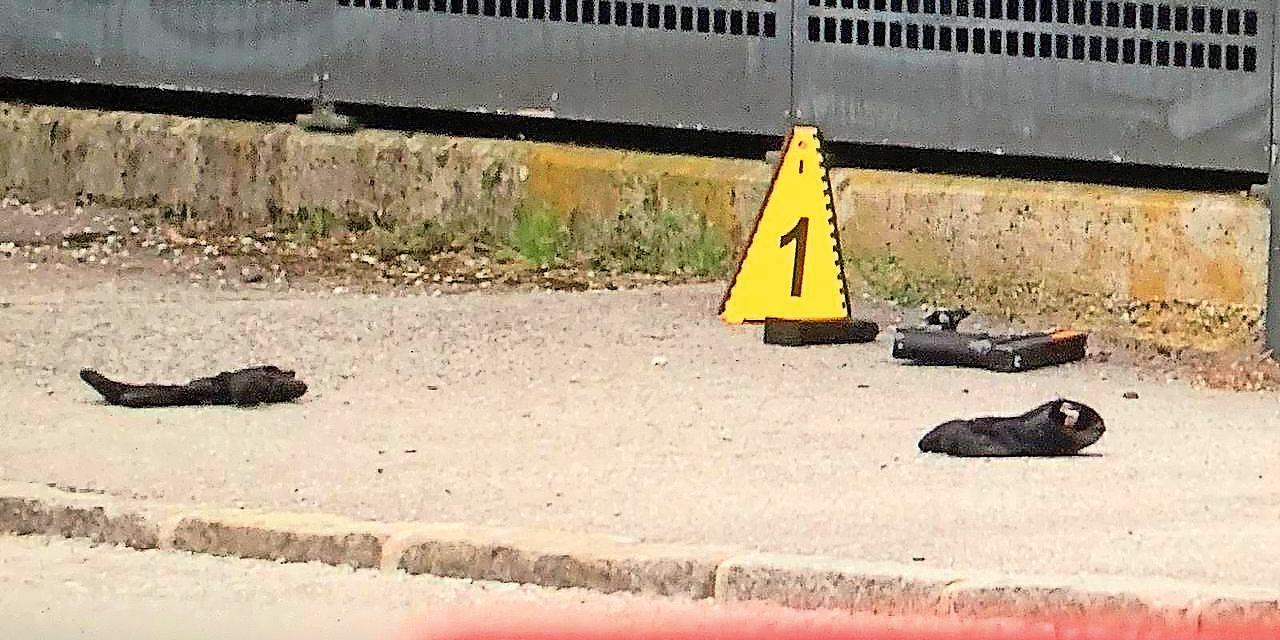 Schüsse in Villenviertel Salzburg Polizist angeschossen