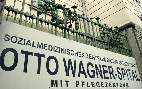 Stadt garantiert Schutz der Steinhof-Gründe