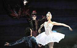 Berühmtestes Ballett der Welt in der Oper