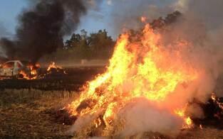 Massive Flurbrände im Waldviertel