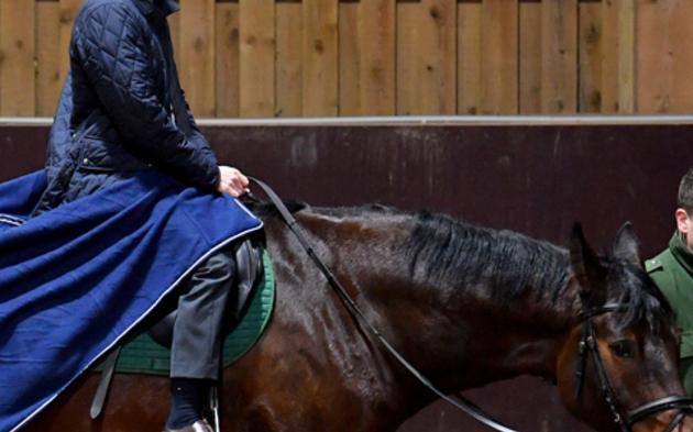 Kickl Pferde Berittene Polizei