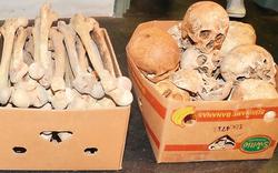 Gestohlene Totenköpfe kehren zurück
