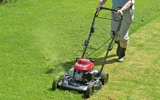 Pensionist stürzt beim Rasenmähen – tot