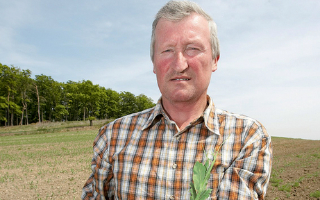 Trockenheit sorgt in OÖ für Ernteausfälle