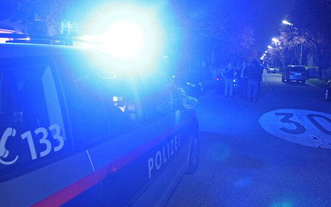 Einbrecher attackierten Polizisten