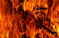 Brand in Einfamilienhaus – Hund tot