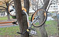 Stadt ist gegen die China-Bikes völlig hilflos