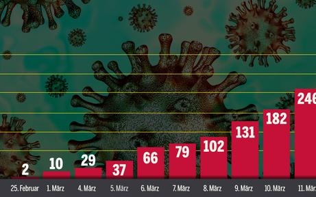 Wie sich das Coronavirus in Österreich ausbreitet