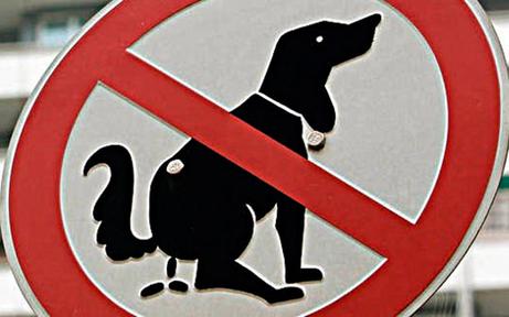 """Keine Strafen: Aus für """"Dogwatcher"""""""
