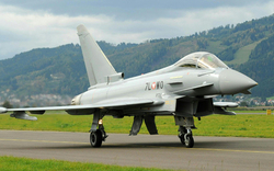Euro-Fighter-Lärm tötet Kühe