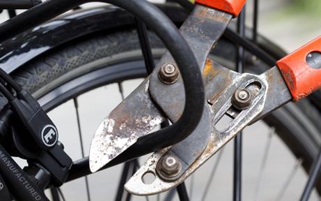 Fahrrad-Dieb bei Staatsgrenze geschnappt