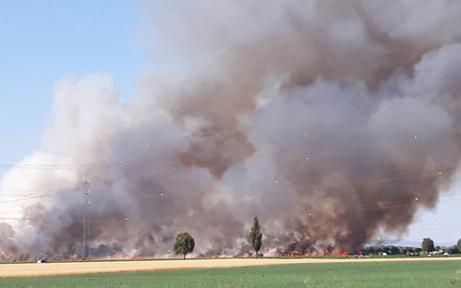 Wiesenbrand: Rauchwolke über ganz Wien