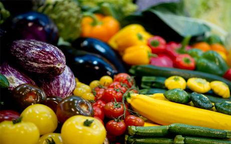 Regenwetter rafft Gemüse-Ernte hin