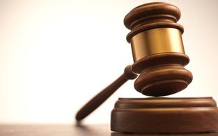 Staatsfeindliche Verbindung: 18 Monate Haft