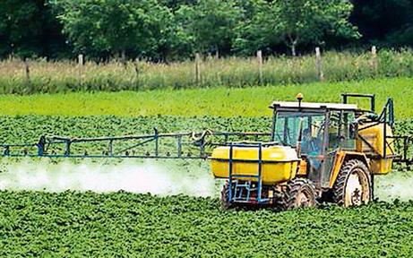 Kärnten kämpft weiter um Glyphosat-Aus