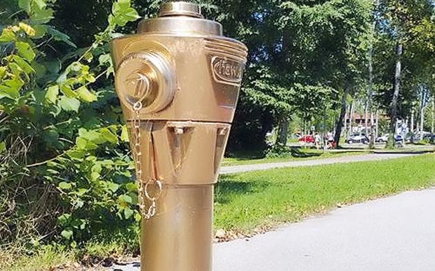 Goldener-Hydrant.jpg