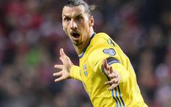 Schweden: Ibrahimovic beendet Teamkarriere
