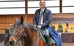 Polizei-Pferde ziehen zu Schönbrunner Giraffen