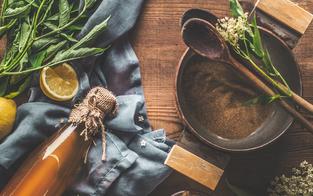 Kräuter und Pflanzen für das Immunsystem