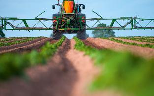 Kärntnermilch will Glyphosat verbieten