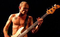 Red Hot Chili Peppers-Bassist schreibt Bio