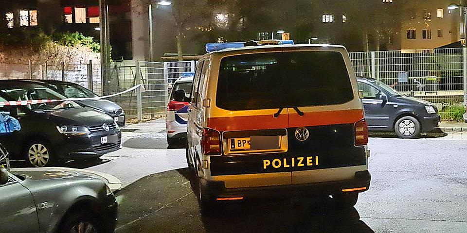 Mord in Geisterhaus in Meidling: Täter war Frau