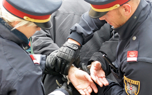1.000 Delikte mehr: Gewalt in Wien explodiert