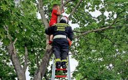 Feuerwehr rettete kleinen Fußballer von Baum