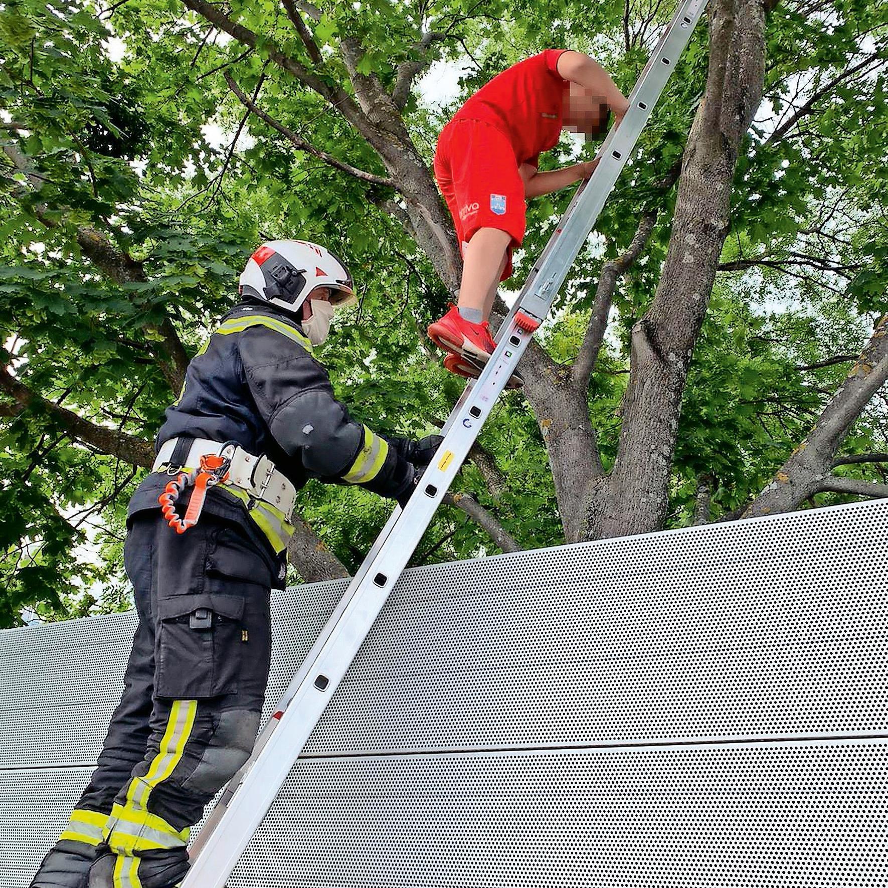 Wiener Neudorf Feuerwehr rettet Fußballer von Baum