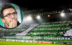 So huldigt Sassuolo-Trainer den Rapid-Fans