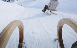Rodler stürzt über Waldhang - tot
