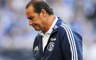Schalke: Ex-Bulle Stevens vor dem Aus