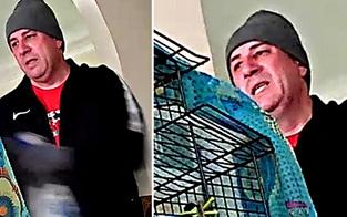 Kamera filmt Einbrecher bei Home-Invasion