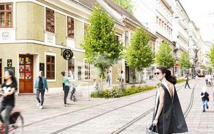Wiener Grüne fordern autofreie Josefstädter Straße