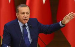 """Erdogan: Werden """"Gülen-Geschwür"""" beseitigen"""