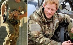 Prinz Harry in Afghanistan: Sein Einsatz