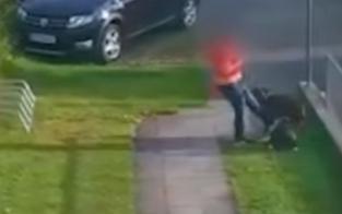 Schock-Video: Frau tritt wie wild auf eigenen Hund ein