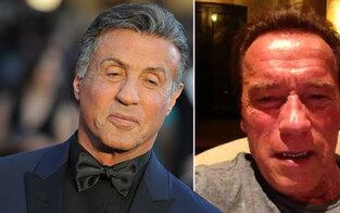 Kein Oscar für Stallone: Arnie sauer