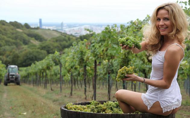 Sexy Einsatz für Grinzinger Weingärten